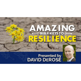 AMAZING BIBLE KEYS TO RESILIENCY